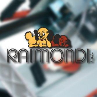Станки Raimondi (Италия)